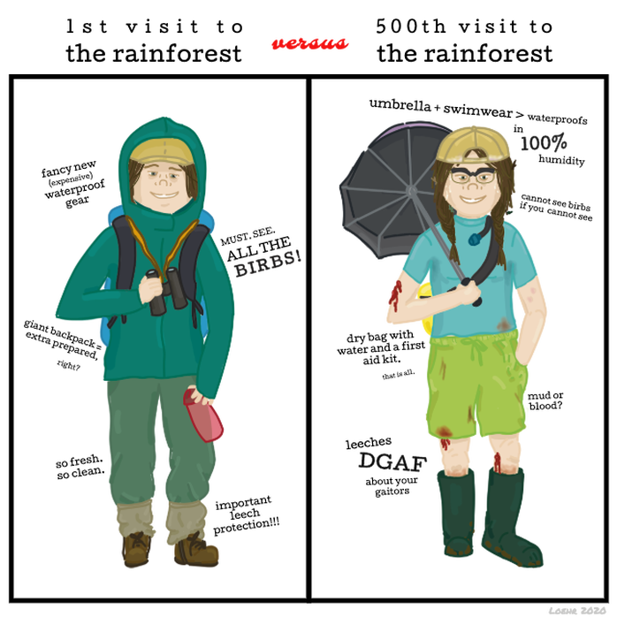 Comic comparing rainforest attire